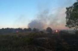 Planuo požar u predjelu Šarinac, u blizini odlagališta Leć