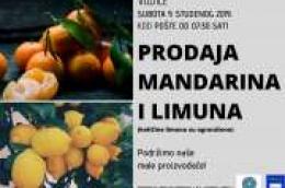 U subotu kod pošte prodaja mandarina i limuna