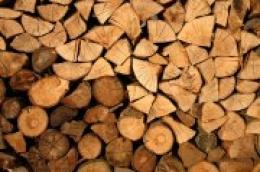 Krenula isplata naknada za podmirivanje troškova ogrjeva na drva, ukupno će biti isplaćeno 57.750,00 kuna