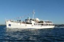 U nedjelju 22.12. Milenijska na vodičkoj rivi: Što je Tijat bez pravog brka?