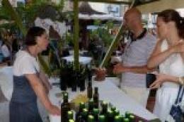 Županija subvencionira marketinške aktivnosti, stručno osposobljavanje i usavršavanje te kupnju dugotrajne imovine poduzetnicima Šibensko-kninske županije