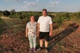 Ante i Neda Fržop jedini u Vodicama zasadili plantažu šipka: I to prave autohtone dalmatinske sorte, Glavaš, Konjski zub i Barski sladun