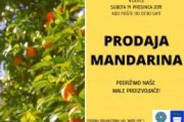 Pomozite svom imunitetu prirodnim vitaminima: U subotu kod pošte prodaja domaćih mandarina