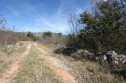 Nova ponuda Moreta nekretnina: Vodice, veliko poljoprivredno zemljište izuzetno pogodno za osnivanje obiteljskog poljoprivrednog gospodarstva