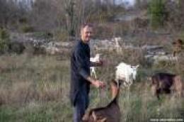 Povratak tradiciji: Josip Brdar prije sedam godina napustio rad u ugostiteljstvu i posvetio se stočarstvu