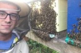 Pčelar Tvrtko Matijević: 'Naš pčelinji otrov je zaista najbolji u svijetu'