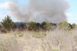 Hrvatska vatrogasna zajednica upozorava na veliku opasnost od izbijanja šumskih požara