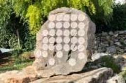 Kamen s glagoljičkom abecedom nova je instalacija u izložbenom vrtu Jole Mateše
