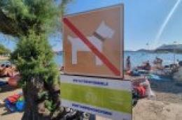 U Hrvatskoj boravi više od pola milijuna turista