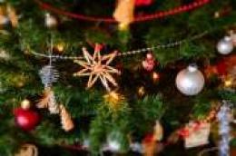 Prenosimo s Bitno.net: Planirali ste danas raskititi bor? Nemojte, jer božićno vrijeme i dalje traje…