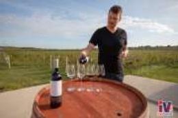 U Vinariji i kušaonici vina Baraka svako vino priča svoju lokalnu priču