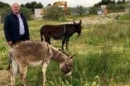 SPOJ TRADICIJE I EGZOTIKE: Posjetili smo vodičku farmu tovara s čuvarima neobičnim za naš kraj