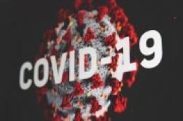 U  našoj županiji dvoje novooboljelih od zarazne bolesti COVID-19, oboje iz Kistanja