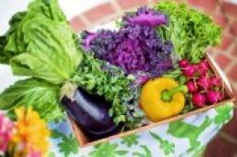 Domaće i svježe iz Vodiškog poja: Pokrenuta stranica za umrežavanje i ostvarivanje kontakata vezanih za hranu od domaćih malih proizvođača