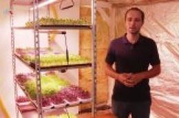 Na Zlarinu uzgaja mikropovrće koje plasira u lokalne restorane i konobe